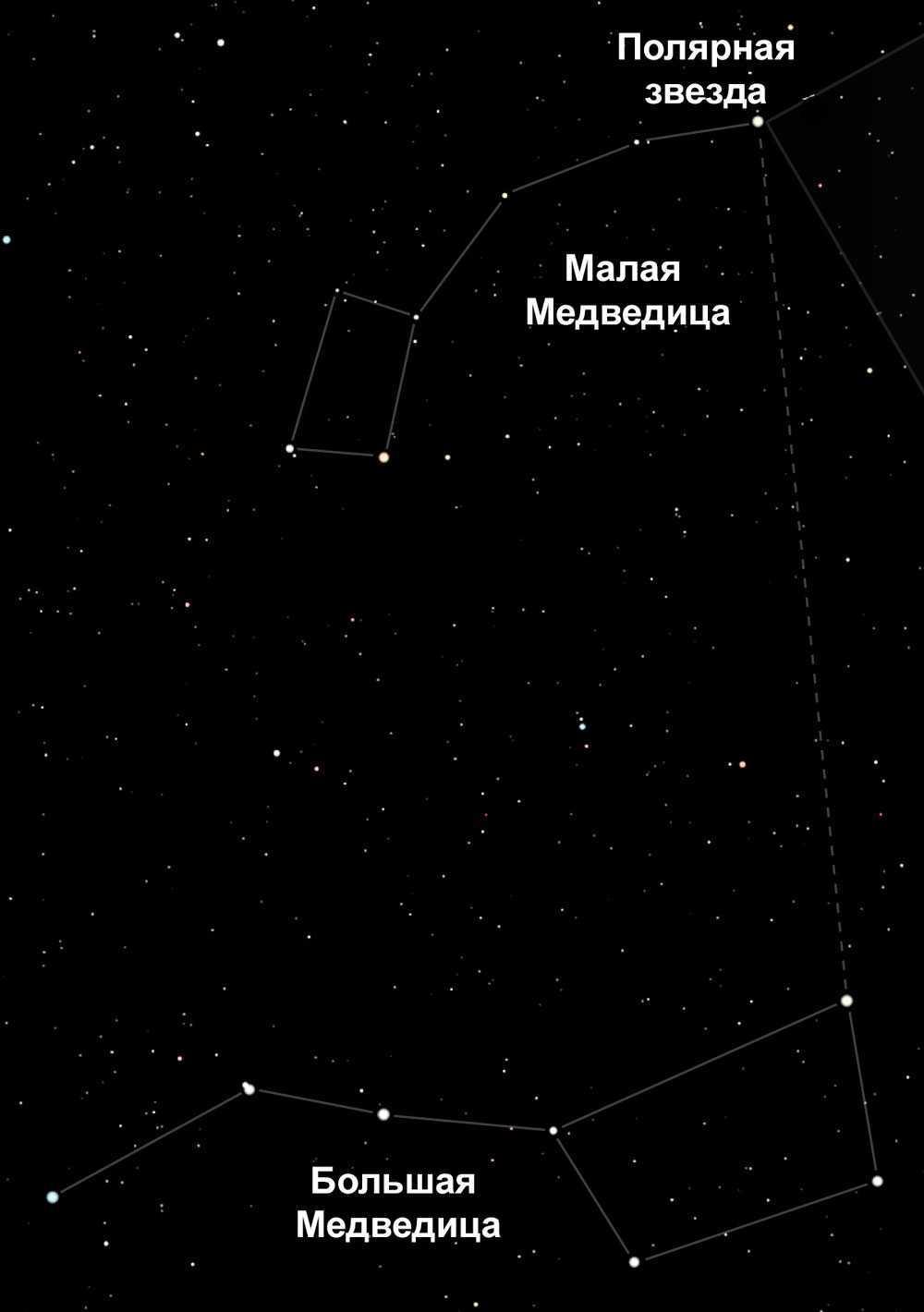 Большая Медведица, Малая Медведица, созвездия, Полярная звезда, звездное небо, расположение, схема, иллюстрация