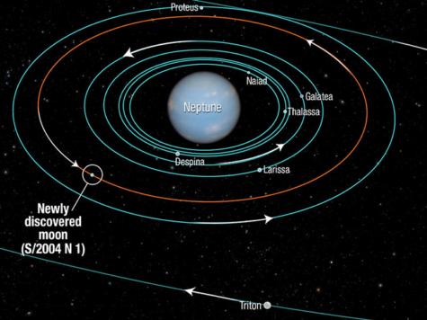 Нептун, планета, спутники, луны, сателлиты, орбиты, схема, иллюстрация