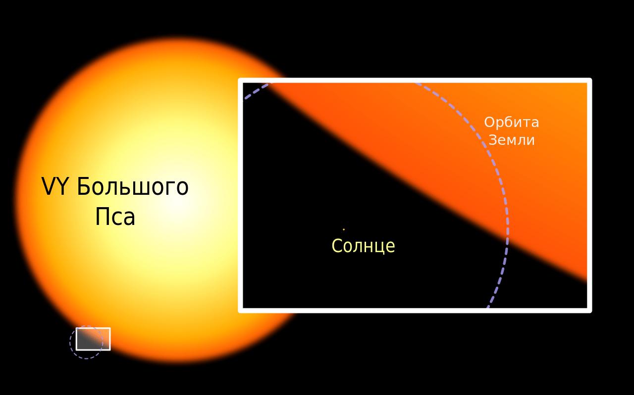 VY Большого Пса, большая звезда, гигант, Солнце, орбита Земли, сравнение размеров, иллюстрация